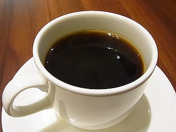 コーヒーの木 写真集 5